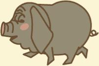 養豚場mix 中国系